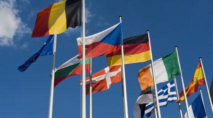 MEPs welcome pledge on reform CAP reform