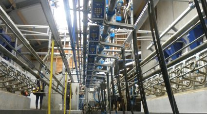 Milk quality key for profitablility