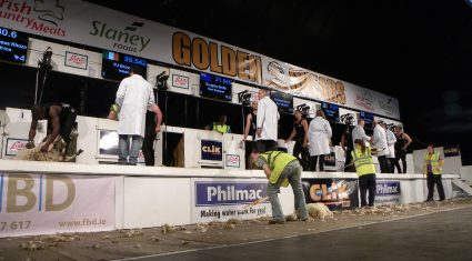 What's on at Golden Shears: DAY 2