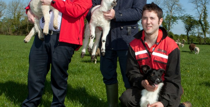 Macra launches RDS sheep scholarship