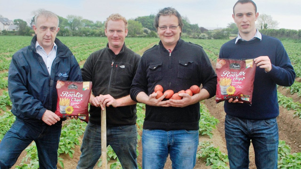 €13 million chip plant investment for Meade Potato