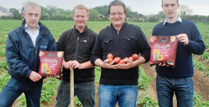 €13 million chip plant investment for Meade Potato