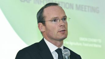 Coveney: 'There are new risks now with the British market'
