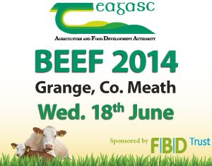 Up to 5,000 expected to attend Beef 2014