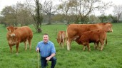 Co. Meath breeder elected to Limousin council