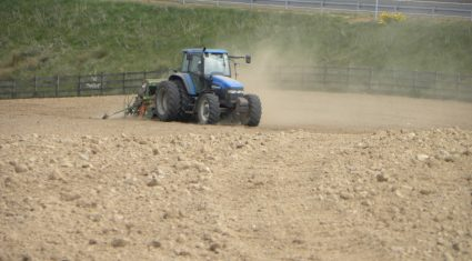 Reseeding and weed advice at Beef 14