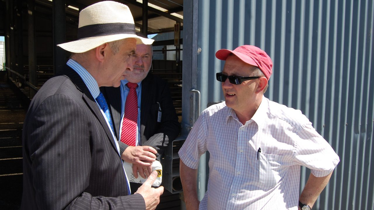 Beef is a numbers' game – Downey