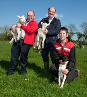 Five days left to enter Macra/RDS sheep scholarship
