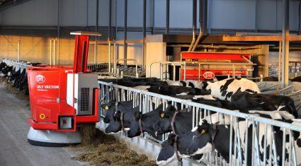 Record 400 entries set for Livestock Event