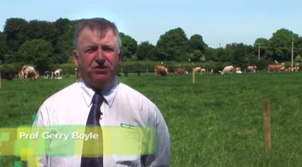 Grange Beef 2014 video highlights