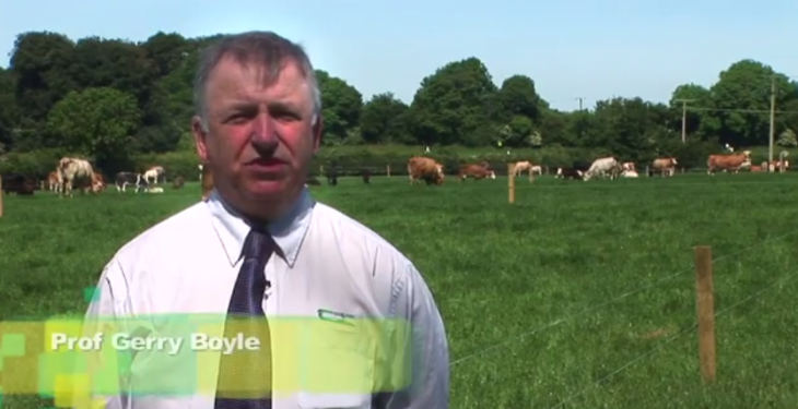 Grange Beef 2014 video highlights