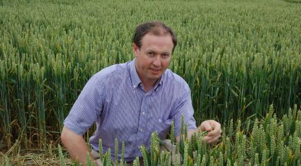 Improving soil fertility is a long-term process
