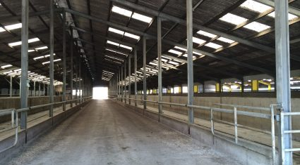 Large Herd Open Day highlights the need for effective disease control strategies