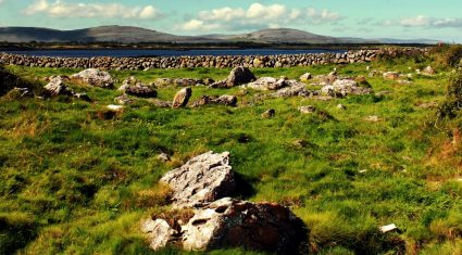 33,000 farmers lose out on €10 million over ineligible land