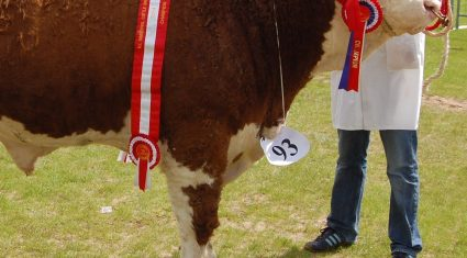 History made at Ballymena Show 2014