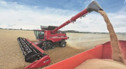 Good EU-28 cereal yields predicted