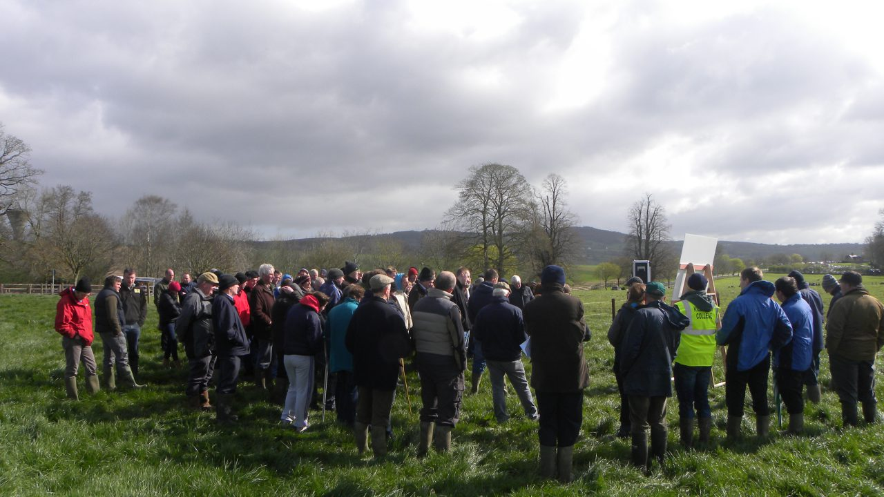 Provision of resources to Teagasc must be reviewed – ICSA
