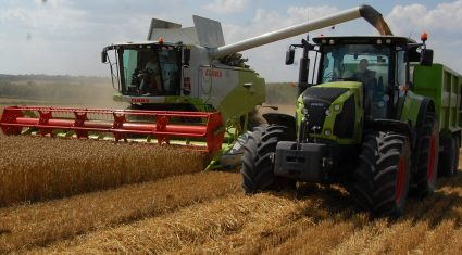 UK wheat harvest underway