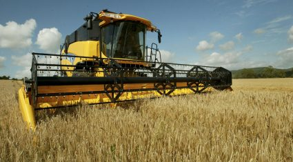 Downward pressure on grain market continues
