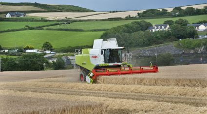 Harvest just 2 weeks away on most farms