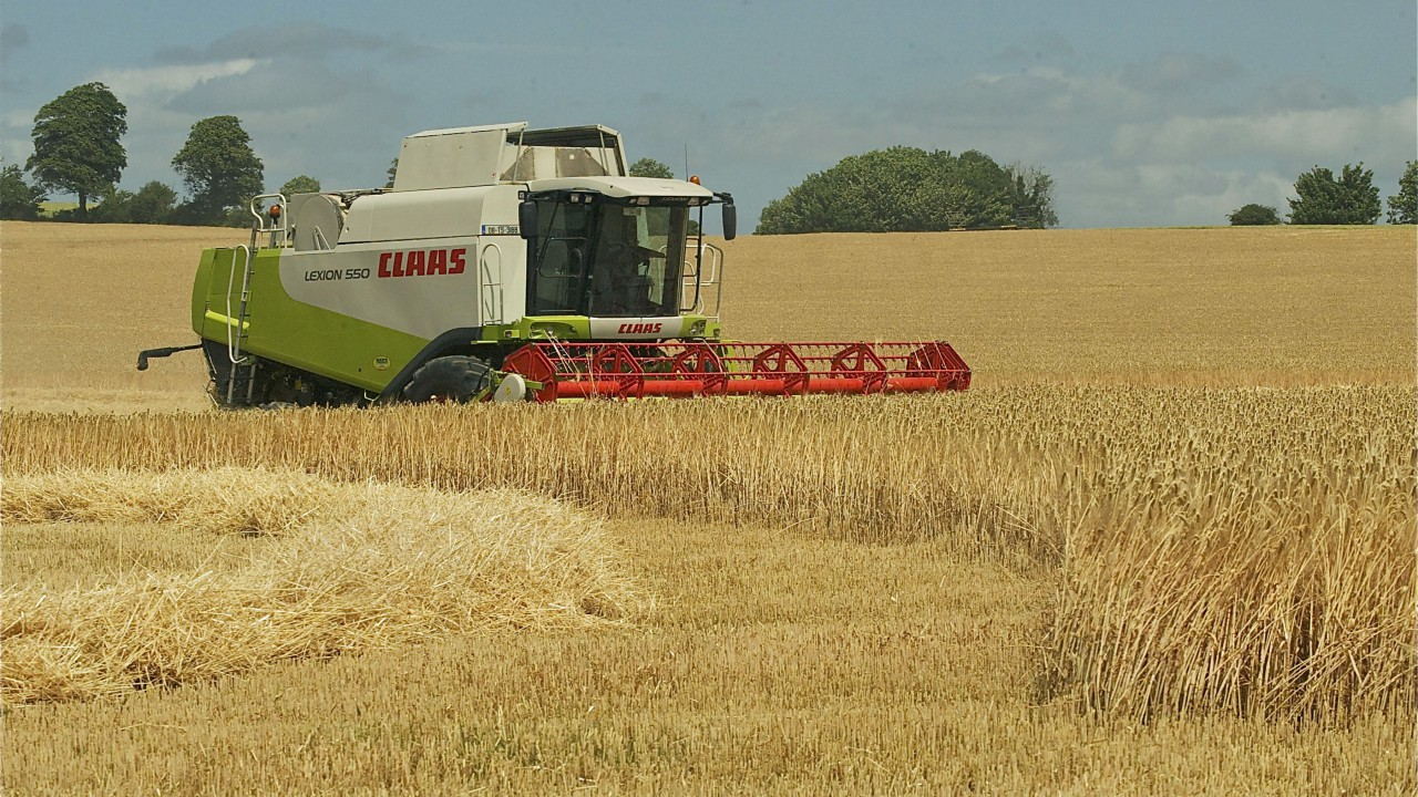 Above average EU cereal harvest on the cards