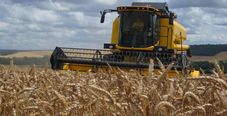 UK harvest 80% done, following 500,000ha push this week