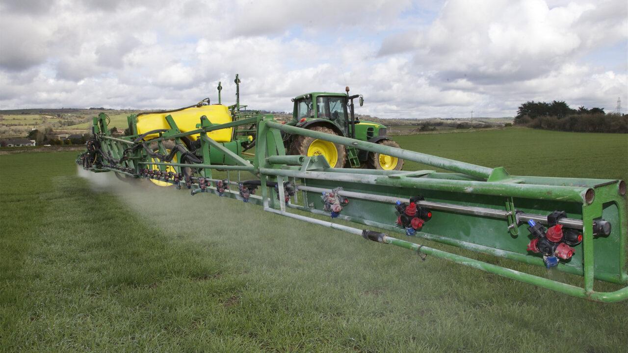 European crops still at risk from frost