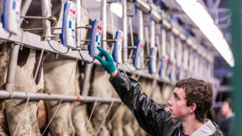 Teagasc to 'open' Green Cert 2016 courses in December