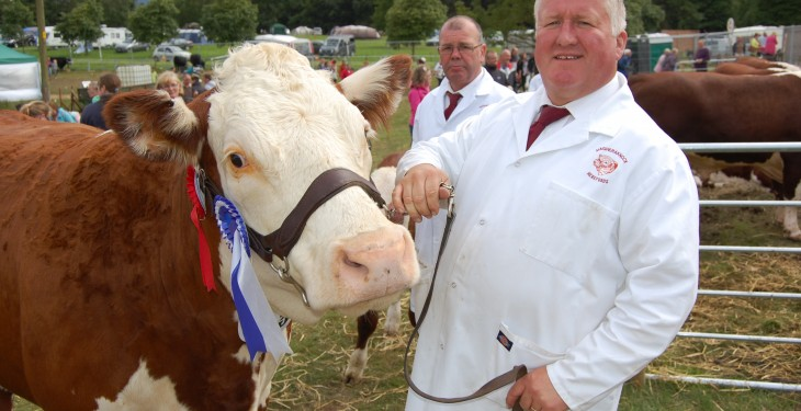 Newry Show has a new home
