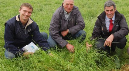 Importance of good soil structure highlighted at open day