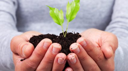 Soil micro-organisms can help farming reduce greenhouse gasses