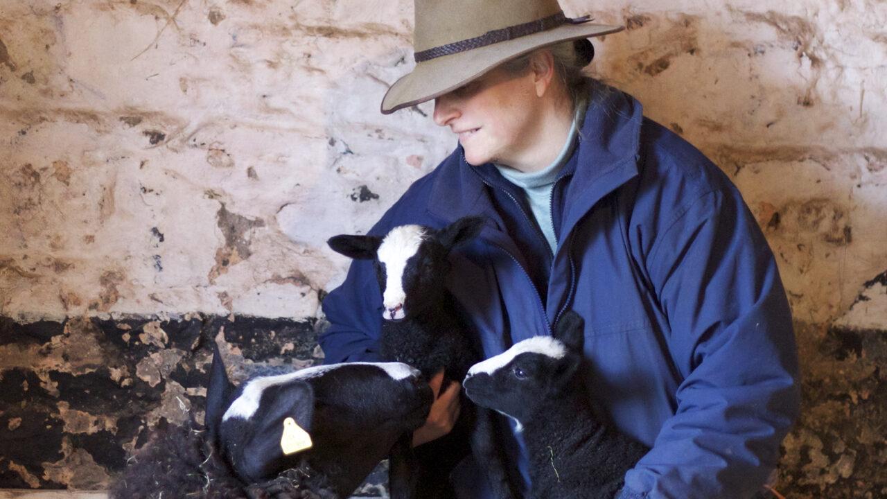 Irish farmers take to Twitter