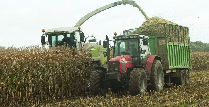 French attempt to ban GM maize rejected