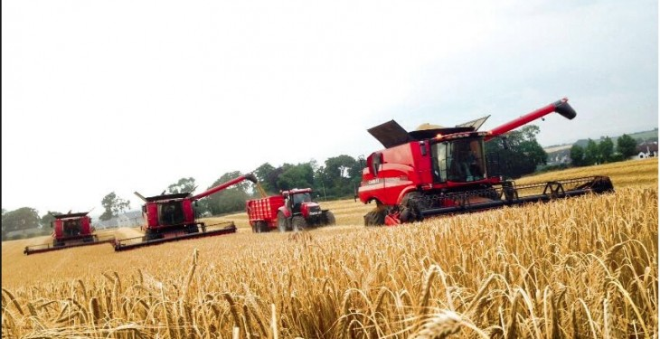 Trade suppliers must support grain farmers – IFA