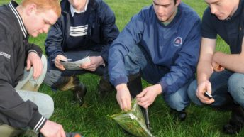 10 things you should know about Teagasc education courses