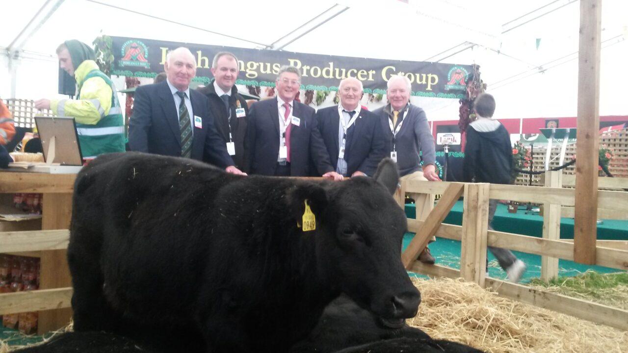 Angus producers' bonus worth €2.8 million