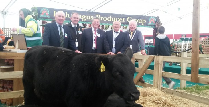 Angus producers' bonus worth €2.8 million