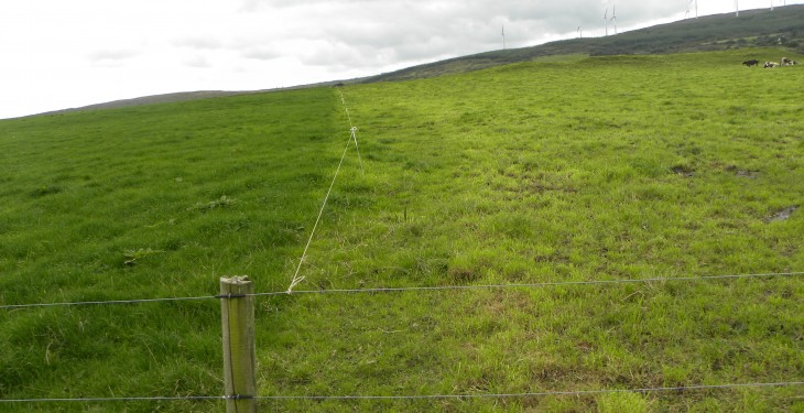 Avoiding early grass deficits this autumn