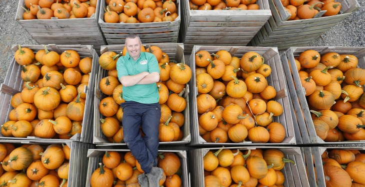 First pumpkins of the season hit the shelves