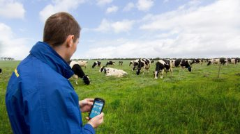 Dairymaster Moo-ve for greater profitability on dairy farms
