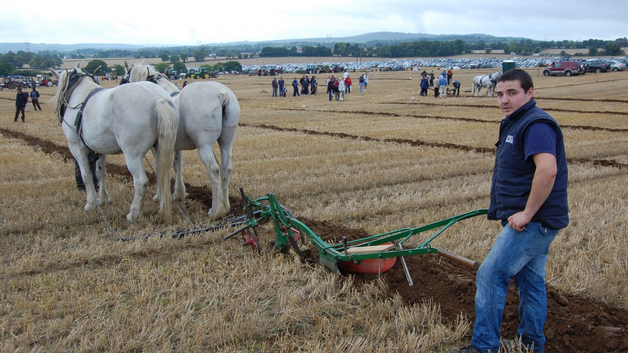 82,000 flock to the Ploughing on first day