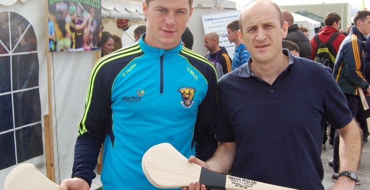 90% of 30,000 hurleys sold at Ploughing made with Scandinavian ash