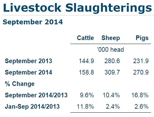 Livestock slaughtering