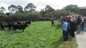Wexford farm Teagasc event to address key farming issues