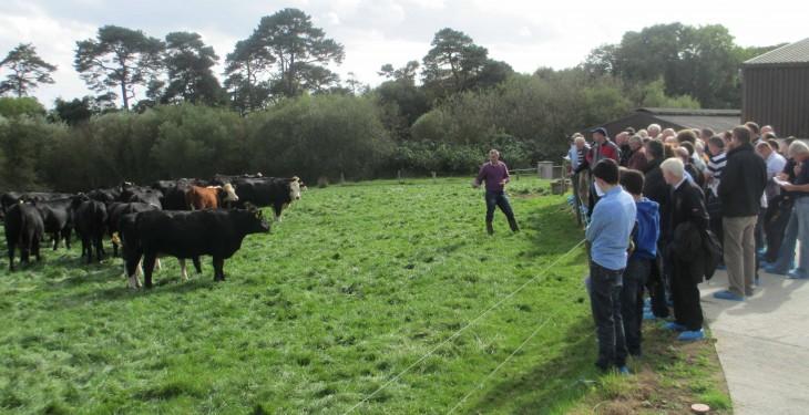Wexford farm Teagasc event to address key farming issues