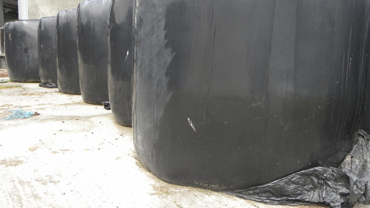 Silage bales making €18-23 on Done Deal while hay is selling for €20-25