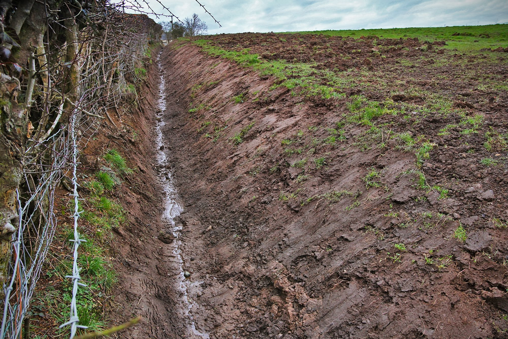 Relationship between agriculture and water quality improving