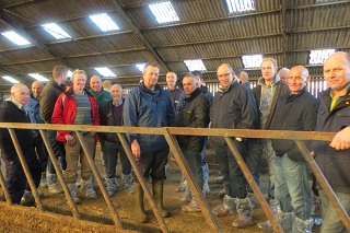 Cow welfare on large Scottish dairy farms