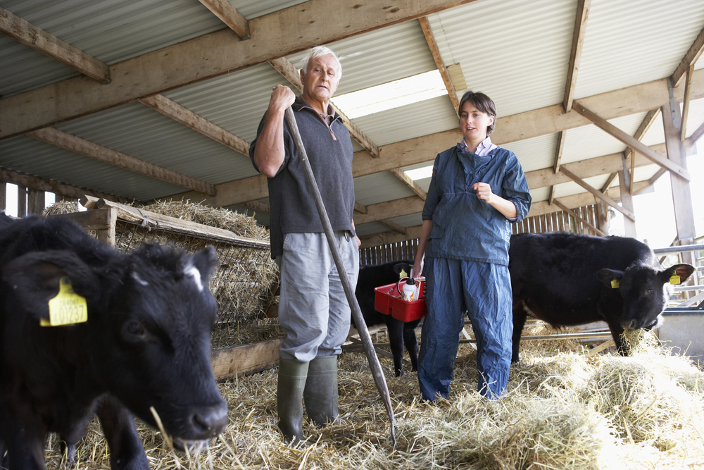 Do you meet the young farmer criteria for the National Reserve?
