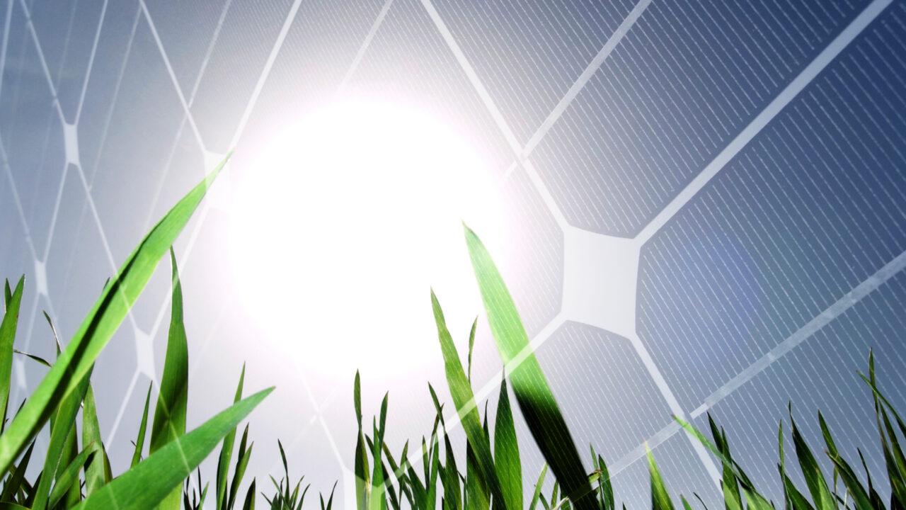 Energy firm gets green light for Clare solar farm